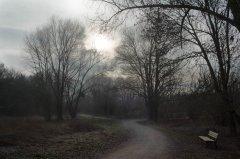Carsten_Thielhelm_Leinemasch_im_Winter-1.jpg